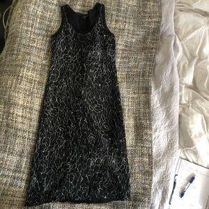 Babaton 100% Silk Dress